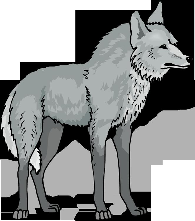 Wolf clipart Wolf animals clip art