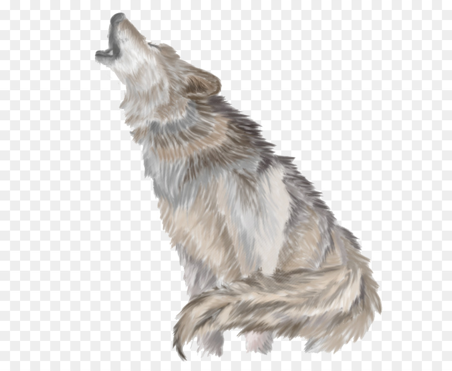 Gray wolf Clip art - Wolves H - Wolves Clipart