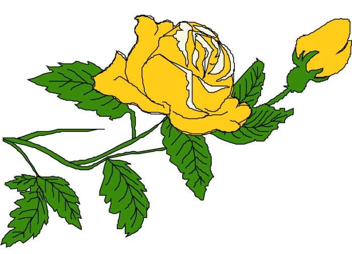 Yellow Roses Clip Art