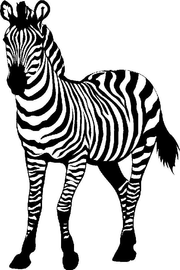 zebra clip art black and white