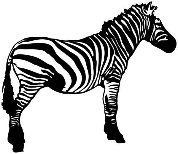 zebra head clipart