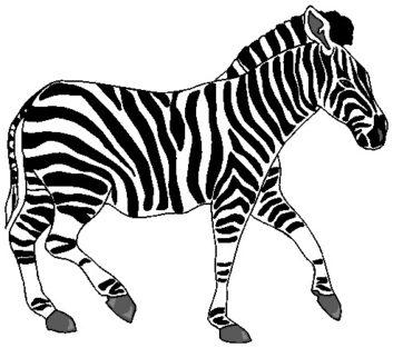 4 Zebra Clipart Animal Free Clip Art Images Clipartwar