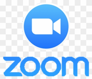Zoom Icon Logo transparent PN